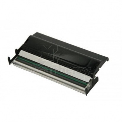 Термоголовка 203dpi Citizen для принтера CL-E300, CL-E321 (PPM80034-0)